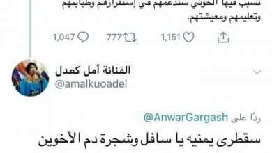 Photo of ماذا ردت الفنانة امل كعدل على تغريدة الدكتور أنور قرقاش بخصوص جزيرة سقطرى