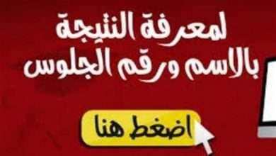 برقم الجلوس نتيجة الثانوية العامة 2019 عبر اليوم السابع موقع الاخبار المصري لعرض نتائج الثانوية 2018 العامة في مصر 13