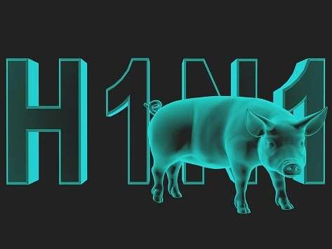 Photo of مرض انفلونزا الخنازير H1N1 يصل صنعاء