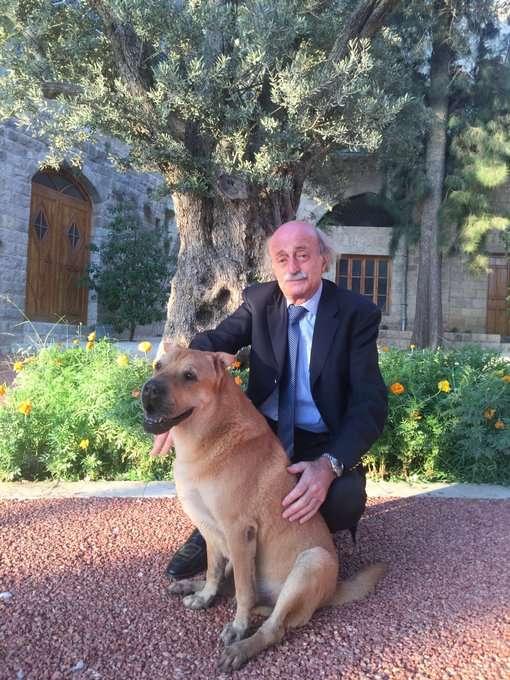 """صورة سبب وفاة اوسكار """" كلب وليد جنبلاط"""