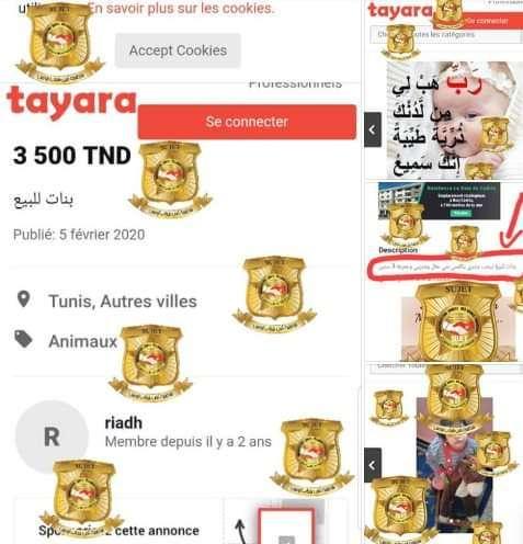 """بيع طفلة في تونس بـ 3500 دينار يثير الجدل """" بنات للبيع """" 1"""