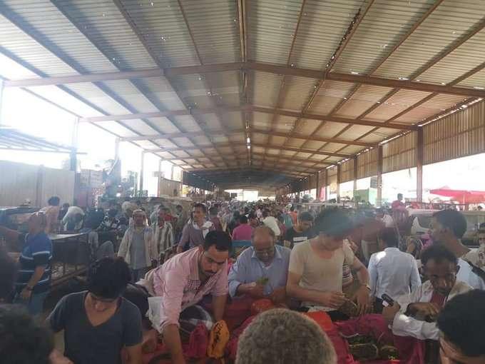 حقيقة اغلاق اسواق القات في صنعاء اليمن 1